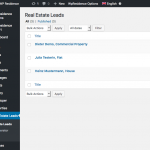 Screenshot: Lead overview (WordPress dashboard)